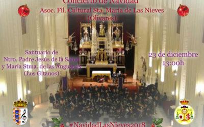 Concierto de Navidad de la Banda de las Nieves de Olivares